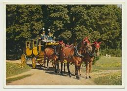 AK CP  Pferd Horse Cheval Postkutsche Bad Kissingen 1963 - Horses