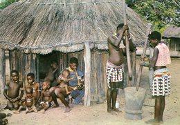 Zimbabwe - Village Scene - Zimbabwe