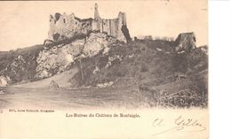 Namur - CPA - Onhaye - Les Ruines Du Château De Montaigle - Onhaye