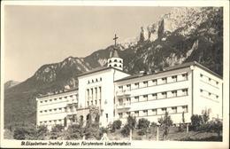 61711415 Schaan Liechtenstein St Elisabethen Institut  /  / - Liechtenstein