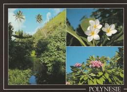 TAHITI (POLYNESIE FRANCAISE) Rivière Et Fleurs - Polynésie Française