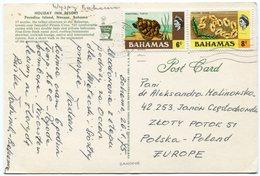 Bahamas - Postcard - Carte Postale - Bahamas (1973-...)