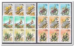 SWA 1978, Postfris MNH, Cacti ( 3 Languages ) - Zuid-Afrika (1961-...)