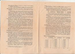 DOC3) 1947 CREDITO ITALIANO PRESTITO ALLA RICOSTRUZIONE REDIMIBILE 3,5 % PROSPET - A - C