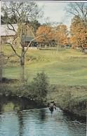 AMERIQUE---canoé Approach--to Beautiful Scenery--voir 2 Scans - Etats-Unis