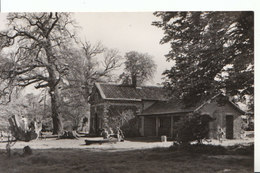 Essex Postcard - Hatfield Forest - The Old Shell House - Ref ND867 - Other