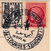 Pélerinage Prisonniers Déportés 1946 Lourdes Seconde Guerre Mondiale WW2 Chiens De Montagne Pyrénées - WW2 (II Guerra Mundial)
