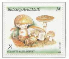 D- [153139] **/Mnh-[2419] Belgique 1991, Végétaux, Champignon, Golmotte, Du Carnet 21, SNC - Champignons