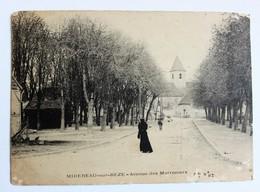 CPA 21 Mirebeau Sur Bèze Avenue Des Marroniers 1906 Tampon OR - Mirebeau