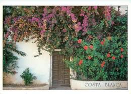 CPSM Costa Blanca      L2578 - Espagne