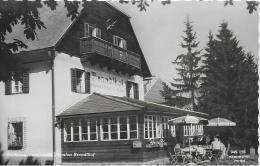 AK 0888  Rechberg - Gasthof Brandlhof / Verlag Knollmüller Um 1960-70 - Frohnleiten