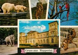 CPSM Gruss Aus Wuppertal       L2578 - Wuppertal