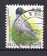 YT N° 3364- Oblitéré - Mouette Mélanocéphale - 1985-.. Vögel (Buzin)
