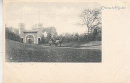 Château De Meudon Kasteel - Neder-over-Heembeek - Paardenkoets - Castles