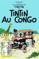 B01-013-3 3048  BD P1395 Carte Souvenir FDC  Afrika Congo Rare Kuifje En Bobby - Tintin Et Milou Hergé 31-12-2001 2800 M - FDC