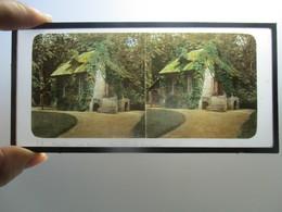 PHOTO Autochrome Versailles Paris - Stereoscopic
