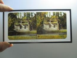 PHOTO Autochrome Versailles Paris Signe Petit Trianon - Stereoscopic