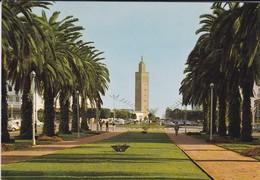 MAROC---RABAT---boulevard Mohammed V---( Mosquée )--voir 2 Scans - Rabat