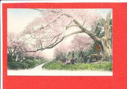 ASIE Cpa Animée A Identifier - Postcards