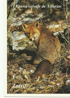 POSTAL ZORRO - Tierwelt & Fauna