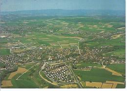 Sinsheim - Steinfurt  Im Kraichgau   - Gesamtansicht    - (wz-dos-0181) - Sinsheim
