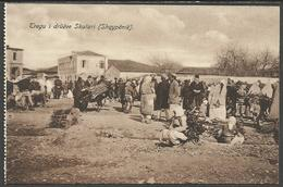 SHQIPËRIA: Tregu I Druëve Skutari - ALBANIA: Mercato Del Legno Di Scutari - Albania