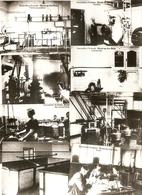 Heyst-op-den-Berg / Heist-op-den-Berg  : Stoommelkerij St-Joseph --- 8 Afbeeldingen ( Repro's) - Heist-op-den-Berg