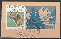 Svizzera Frammento Di Postkarte / Cartolina Postale (vedi Scan) - Svizzera