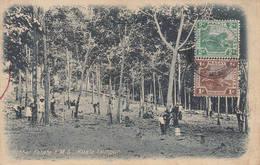Rubber Estate F M S Kuala Lumpur Use 1923 To Penang MALAYSIA Malaisie Malaya Sakai Asie Asia Pinang - Malaysia