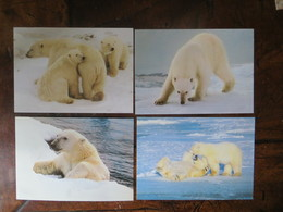 CARTE POSTALE OFFICIELLE WWF (X 4) OURS POLAIRE POLAR BEAR - Ours
