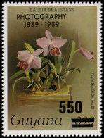 Guyana 1989 Photography 550 On 390c Unmounted Mint. - Guyana (1966-...)