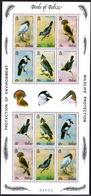 Belize 1980 Birds Double Sheet (corner Crease Affecting Top Left Stamp) Unmounted Mint. - Belize (1973-...)