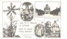 Scherpenheuvel-Zichem - CPA - Montaigu - Scherpenheuvel-Zichem