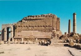 IRAQ, HATRA  Ruins Old Postcard - Iraq