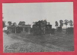 Lanaken - SNCV  - Trams ... Dépôt Du Tournebride Vers 1900 - Repro's