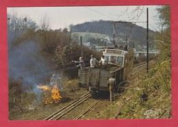 Lobbes - Tramway Historique ... équipe De Bénévole Est De Corvée ... Débroussaillage - Reproductions