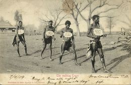 South Africa, The Walking Craze (1904) Sallo Epstein & Co. Postcard - South Africa