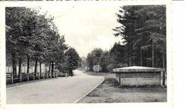 Liège - CP - Camp Elsenborn - L'entrée - Elsenborn (Kamp)