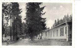 Liège - CP - Camp Elsenborn - Av. Léopold III - Elsenborn (Kamp)