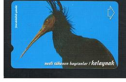 TURCHIA  (TURKEY)  -  2000 BIRDS: HERMIT IBIS  - USED - RIF. 10764 - Turquia