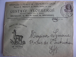 BRUXELLES 1922 - Enveloppe Publicitaire - GUSTAVE VLOEBERGH - Eponges Et Peaux De Chamois En Gros - Imprimerie & Papeterie