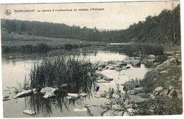 Herbeumont La Semois à L'embouchure Du Ruisseau D'Antrogne - Herbeumont
