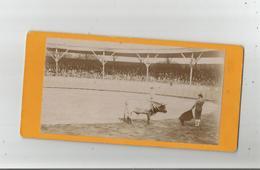 TAUROMACHIE CORRIDA BELLE PHOTO ANCIENNE - Sports