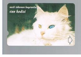 TURCHIA  (TURKEY)  -  2000  VAN CAT           - USED - RIF. 10767 - Turquie