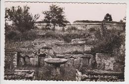 (12/2) France Orrouy. Ruines De Champlieu - Unclassified