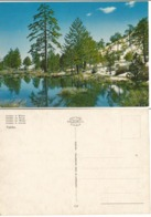 Cyprus Kibris Unused Color PPC Troodos Mountains With Lake In Winter - Cyprus