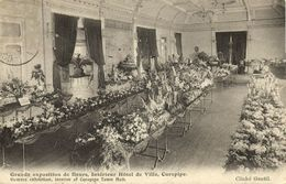 Mauritius Maurice, CUREPIPE, Town Hall, Flower Exhibition (1909) Postcard - Mauritius