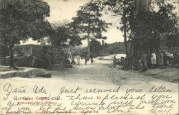 Ghana, Gold Coast, CAPE COAST, Street Scene Native Houses (1909) Postcard - Ghana - Gold Coast