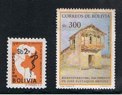 BOLIVIA:  1978/84  COMMEMORATIVI  -   2  VAL. N. -  YV/TELL. 572 + 649 - Bolivia