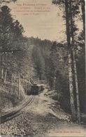 """CPA 31 LUCHON Chemin De Fer à Crémaillère De Superbagnères Dans La Forêt """"Les Pyrénées"""" - Luchon"""